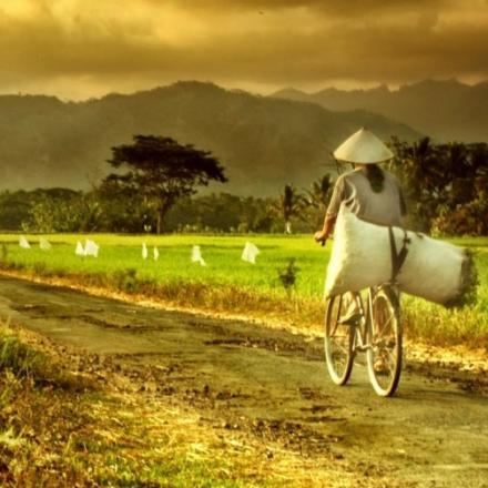 27 Desa/Kelurahan Se-Kecamatan Rembang Ikuti Pelatihan SID
